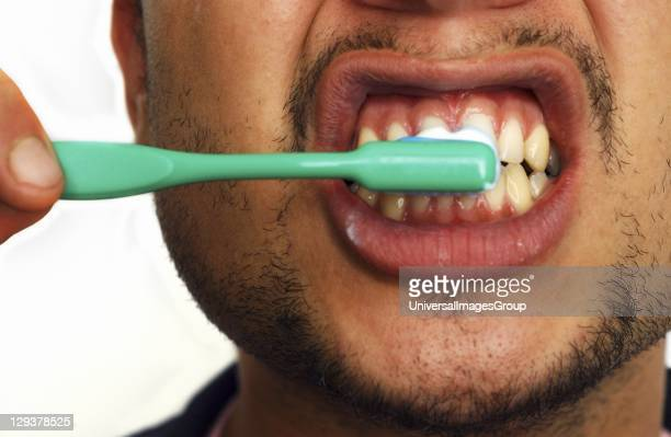 Closeup of young man brushing his teeth Regular brushing of teeth helps prevent tooth decay and gum disease