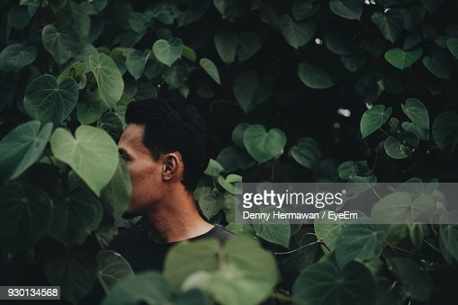 Close-Up Of Young Man Standing Amidst Plants