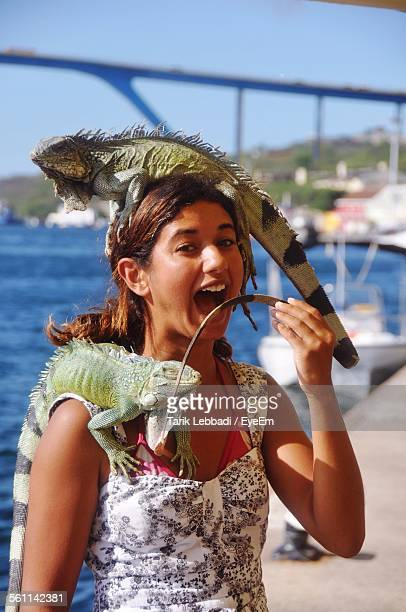 close-up of young woman with iguana on her head and shoulder - iguana stock photos and pictures