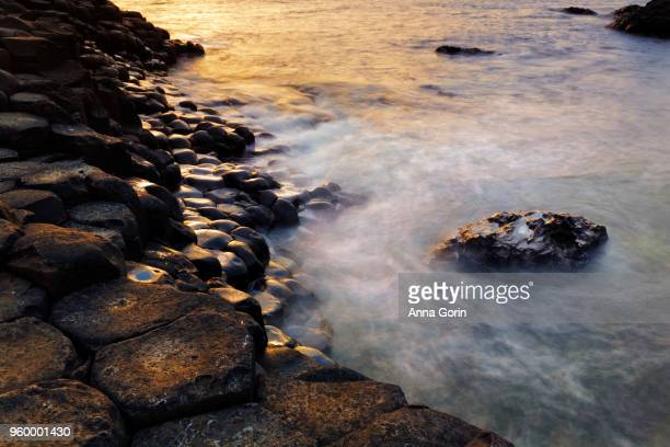 Closeup on basalt columns forming famous Giant's Causeway in Northern Ireland, golden sunset light on rocks