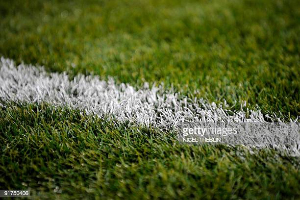 Closeup on the artificial grass of the pitch taken during the Russia vs Germany football World Cup 2010 qualifying match on October 10 2009 at...