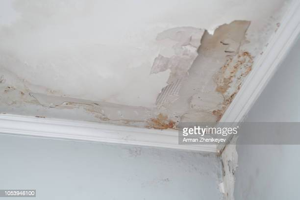 closeup on the water damaged ceiling - wet stock pictures, royalty-free photos & images