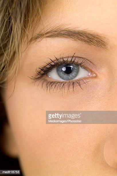 close-up part portrait of the eye of a woman - gray eyes stock pictures, royalty-free photos & images