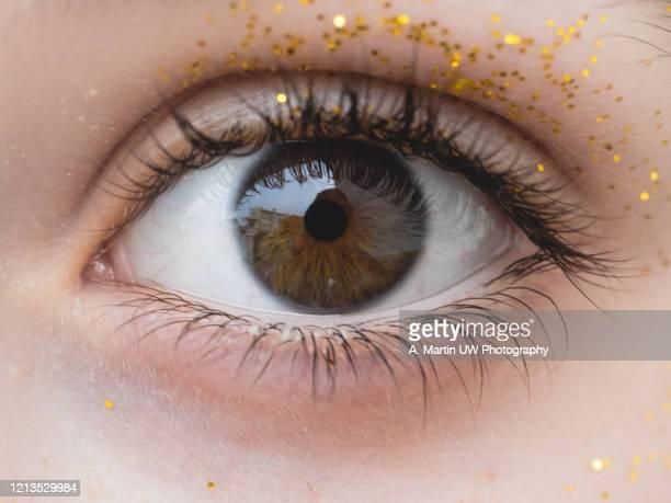 close-up photo of a girl's eye with glitter - marrón fotografías e imágenes de stock