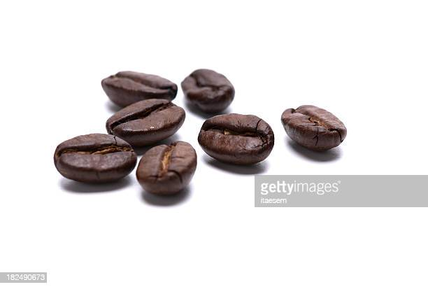 Closeup photo of seven coffee beans on a white background