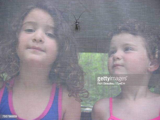 close-up portrait of a girl looking through window - mosquito net stock photos and pictures