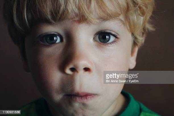 close-up portrait of boy - brianne stock pictures, royalty-free photos & images
