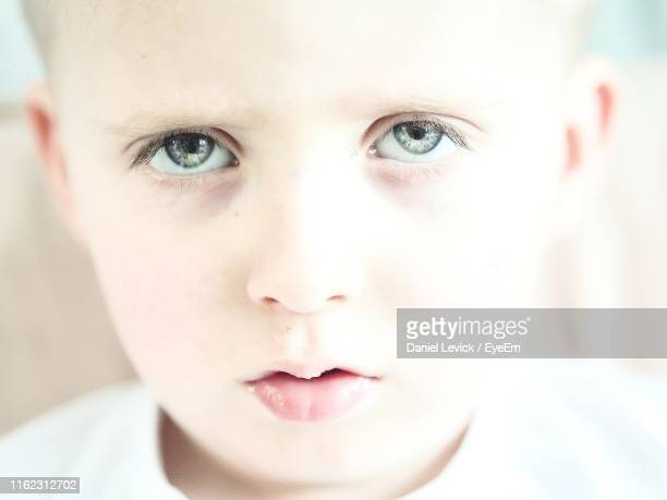 close-up portrait of boy - st. albans stock pictures, royalty-free photos & images