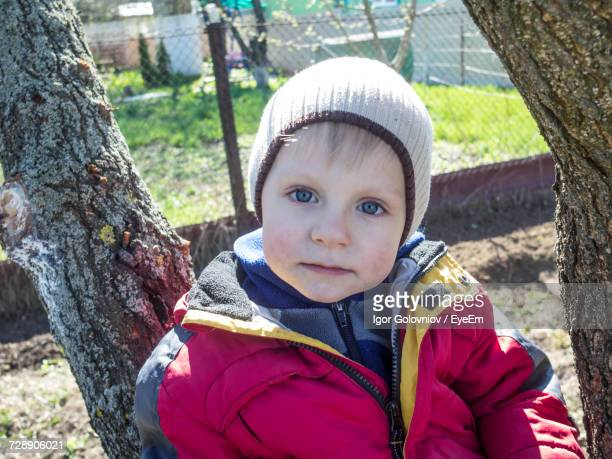 close-up portrait of boy sitting on tree - igor golovniov stock pictures, royalty-free photos & images