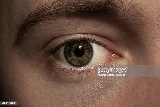 close-up portrait of human eye - human eye stock pictures, royalty-free photos & images