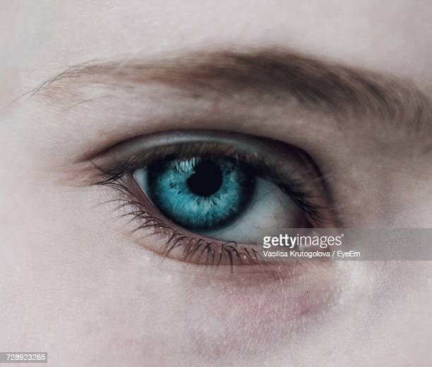 Close-Up Portrait Of Human Eye