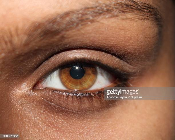 close-up portrait of human eye - light brown eyes stock photos and pictures