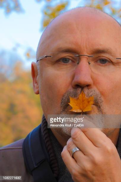 Close-Up Portrait Of Mature Man Kissing Maple Leaf At Park