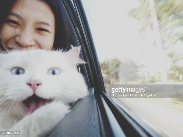close-up portrait of woman and cat in car - funny cats photos et images de collection