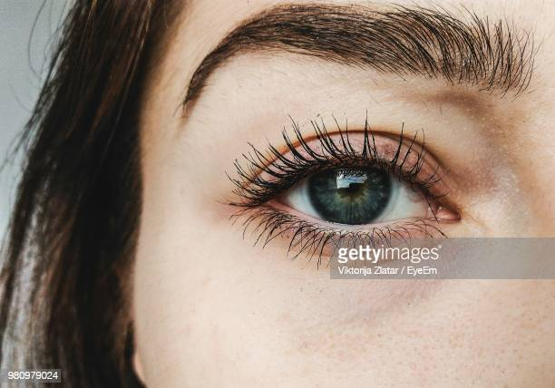 close-up portrait of woman eye - eyelash stock pictures, royalty-free photos & images