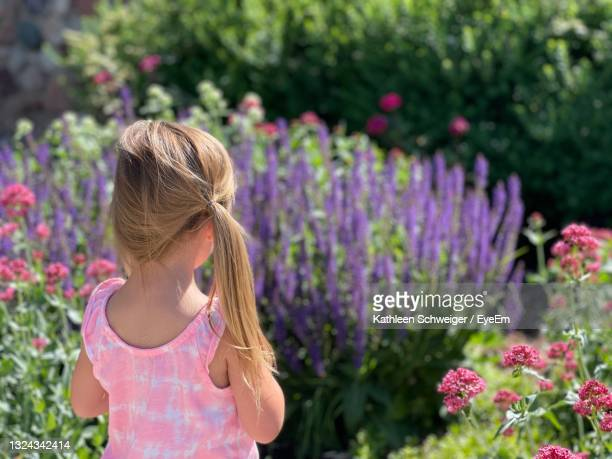close-up portrait of young girl looking at beautiful  purple and pink  flowers outside. rear view. - highlands ranch colorado stock pictures, royalty-free photos & images