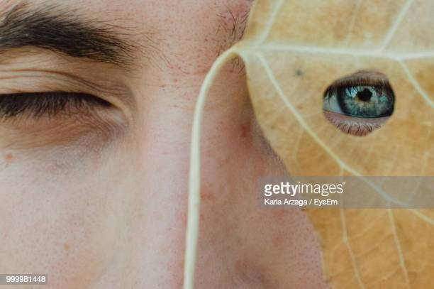 close-up portrait of young man looking through leaf - eyelid stock photos and pictures