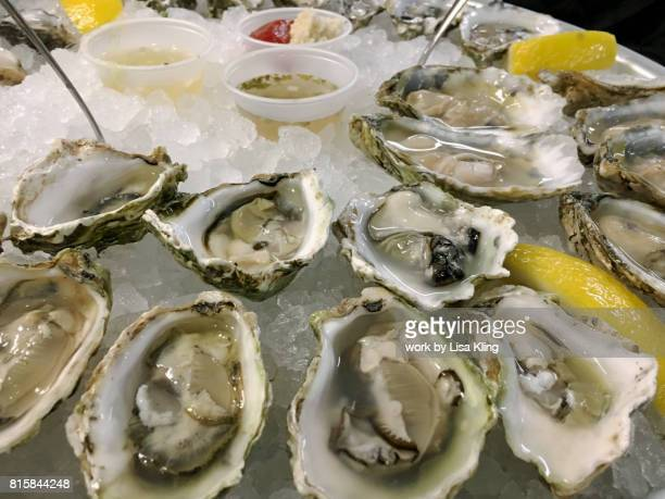 Close-up raw bar half shell oysters