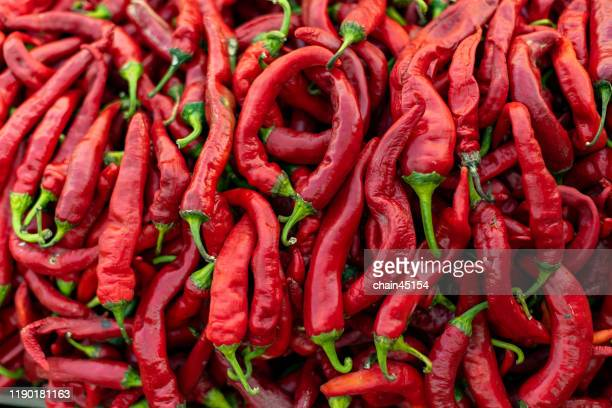 close-up red chili for creating the fruit and vegetable background - red chili pepper stock pictures, royalty-free photos & images
