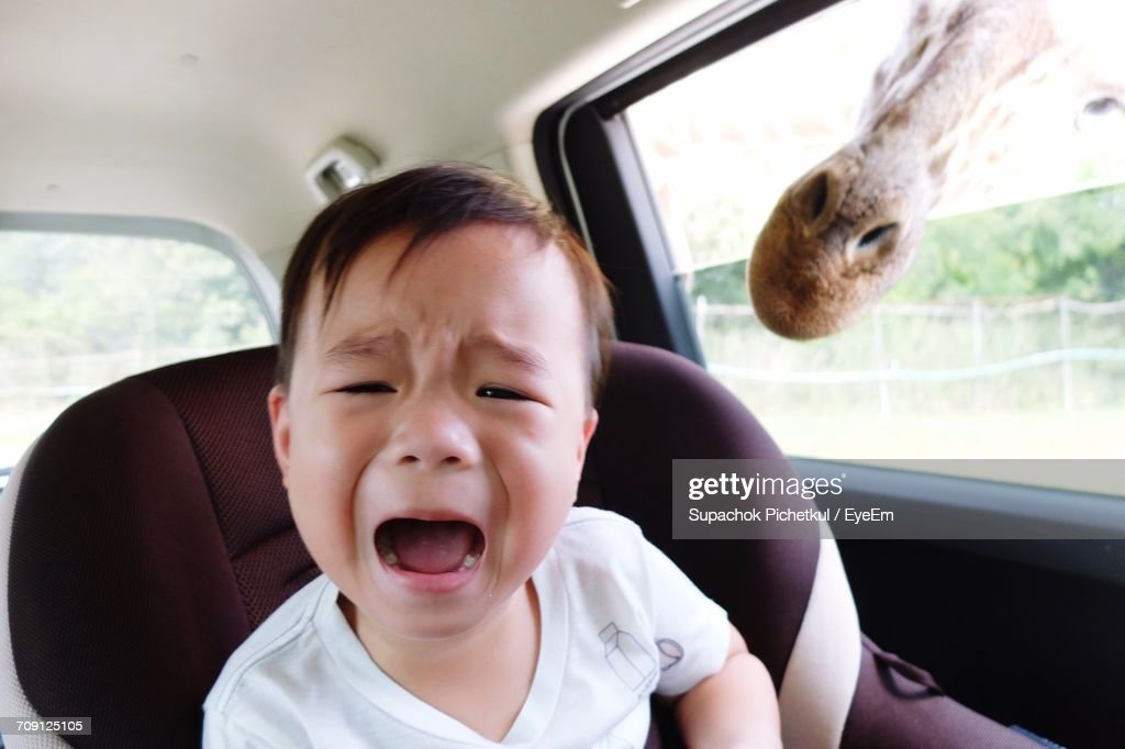 Close-Up Screaming Baby Boy In Car : Stock Photo