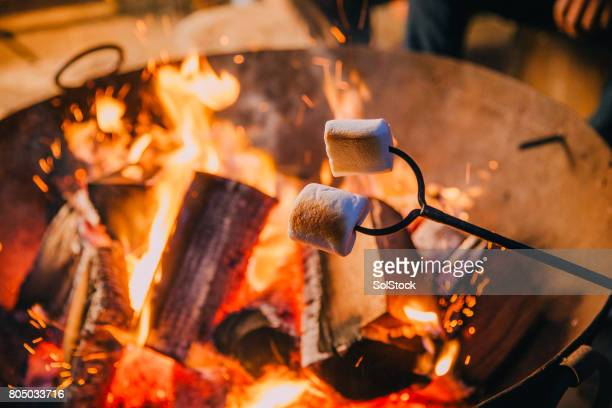 close-up shot of marshmallows being held over a fire - fire pit stock pictures, royalty-free photos & images