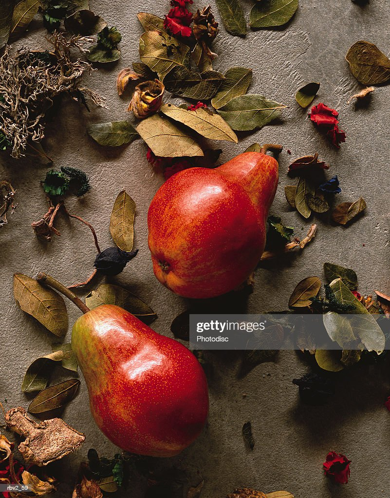 close-up two red pears that have fallen to the ground amongst green and red leaves on a gray surface : Foto de stock