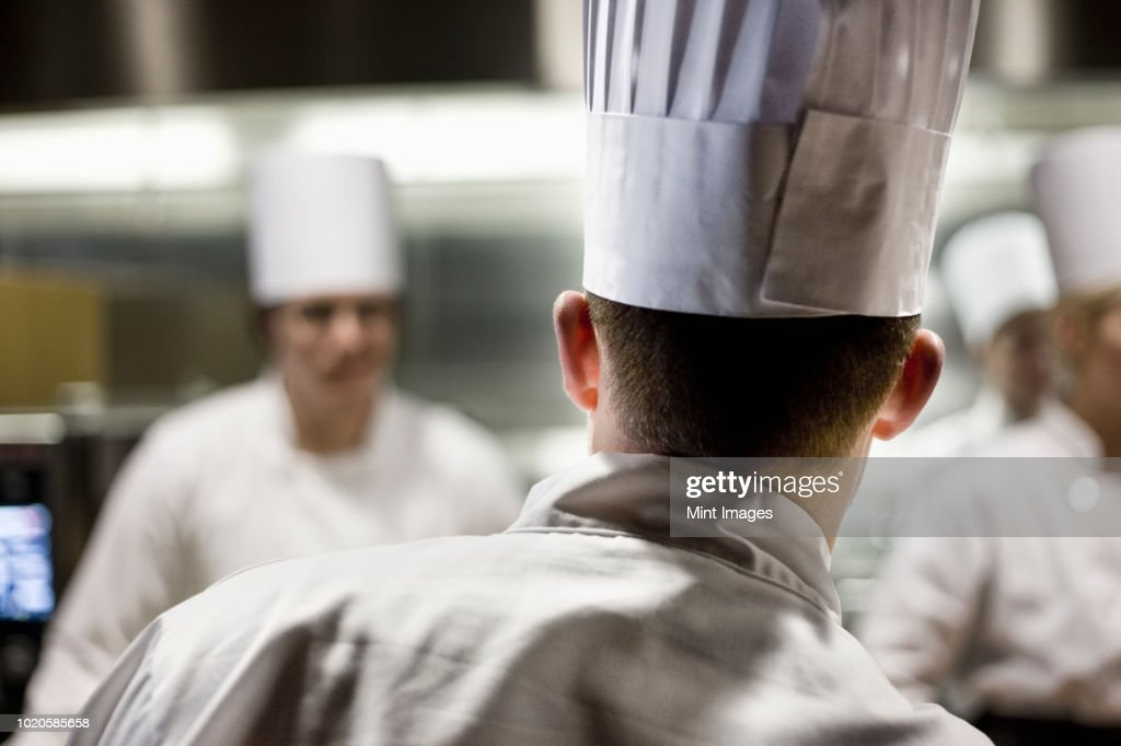 A closeup view from behind of a chef  wearing a toque hat in a commercial kitchen. : ストックフォト