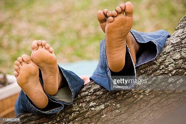 Close-up view of a pair of feet resting on a low-hanging tree branch in a garden