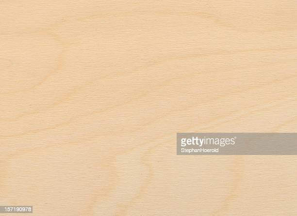 Close-up view of a uniformly lit birch plywood board