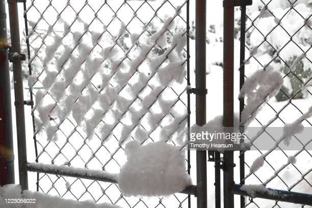 close-up view of chain link fence gate with snow - timothy hearsum stock pictures, royalty-free photos & images