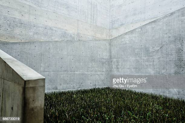 Close-Up View Of Concrete Wall