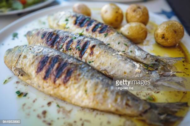 close-up view of grilled sardine fishes served in oil with baked potatoes, portugal - portuguese culture stock pictures, royalty-free photos & images