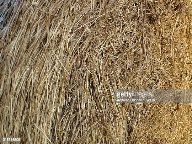 Close up View Of Hay Bale
