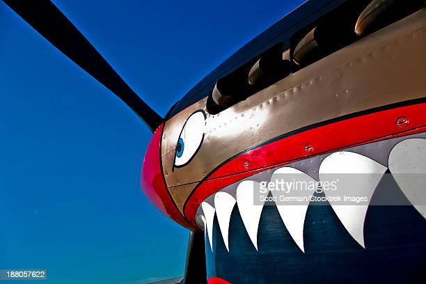 close-up view of the nose art on a curtiss p-40e warhawk on display at the warhawk air museum, nampa, idaho. - curtis p40b warhawk stock pictures, royalty-free photos & images