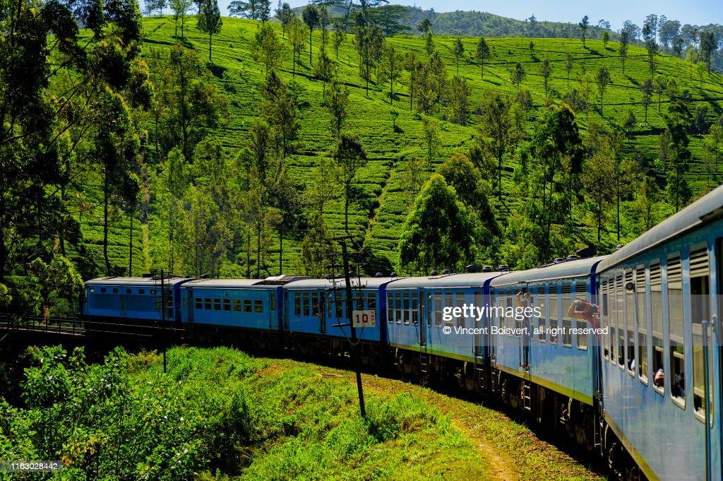 close-up view of the tea plantation train in haputale, sri lanka : Stock Photo
