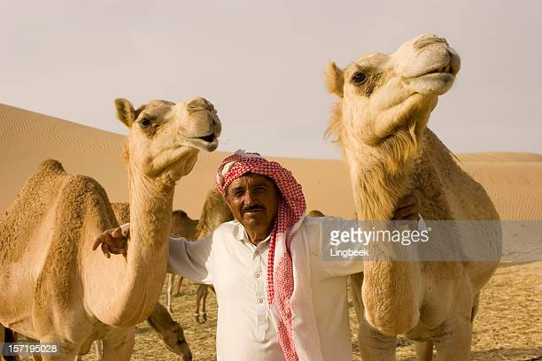 close-up wide-angle shot of  camel on a camelfarm - perzische golfstaten stockfoto's en -beelden