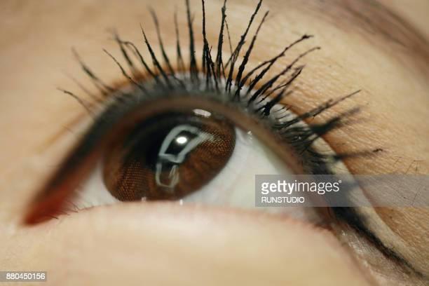 Close-Up Woman Eye Make-Up