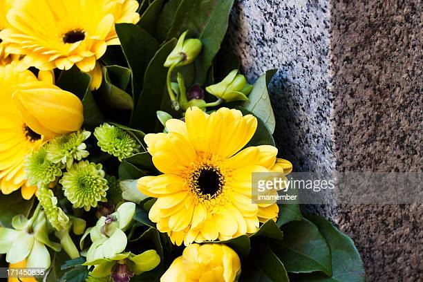 Closeup yellow daisys on granite stone, copy space