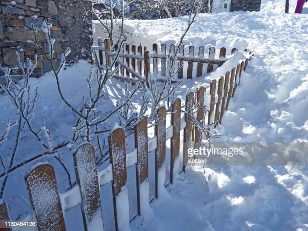 closing fence covered with snow - arbusto stock pictures, royalty-free photos & images