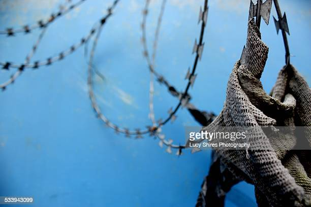 cloth in razor wire against blue - lucy shires stock pictures, royalty-free photos & images
