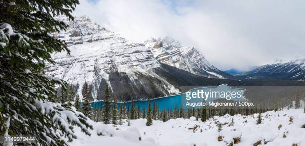 cloth - banff national park stock pictures, royalty-free photos & images