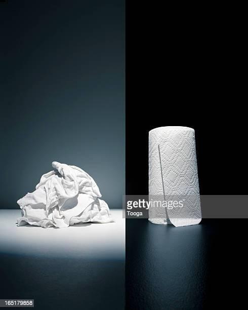 Cloth rags vs. paper towel