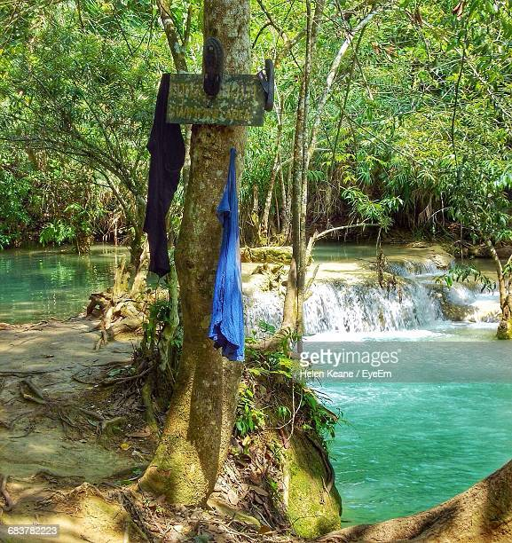 Clothes And Flip-Flops Hanging On Tree At Kuang Si Falls