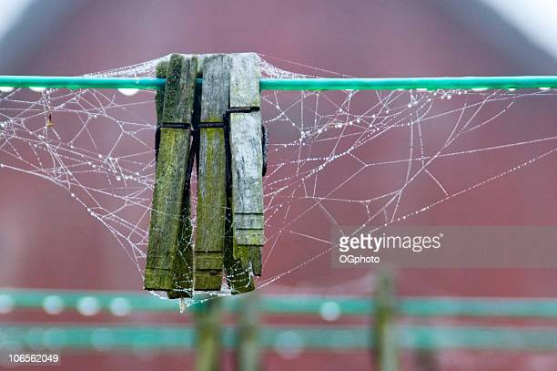 clothes pins with spider web - ogphoto stock pictures, royalty-free photos & images