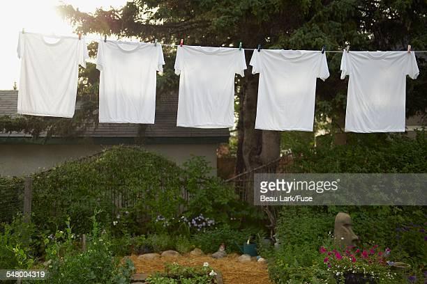 Clothesline hanging in garden