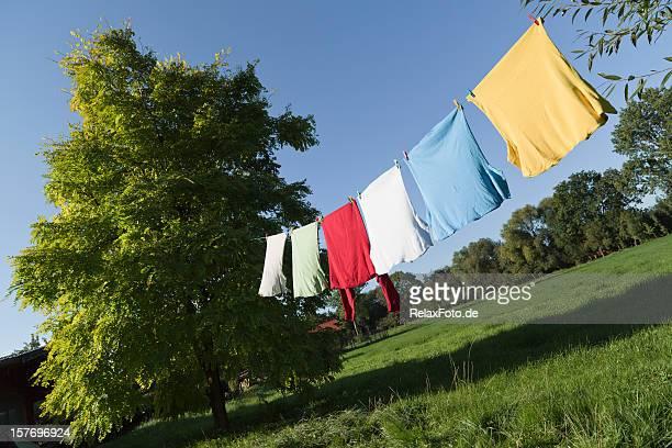 Wäscheleine mit multi Farbige t-shirts zwischen Bäumen (XXXL