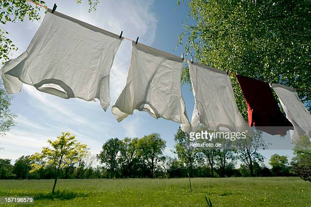 Clothesline with white and red t-shirts between trees