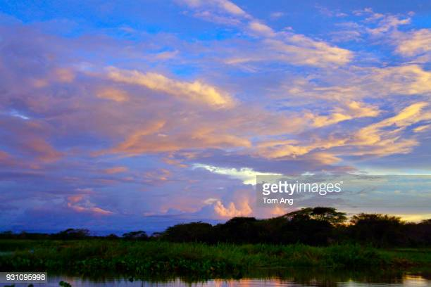 cloud typologies from ground and air - guyana fotografías e imágenes de stock