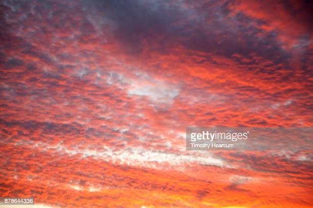 cloud typologies - timothy hearsum bildbanksfoton och bilder