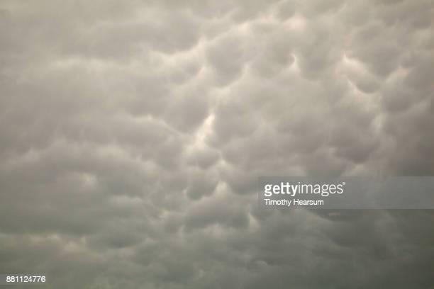 cloud typologies - timothy hearsum fotografías e imágenes de stock